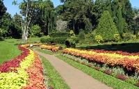 Botanical_Gardens1s