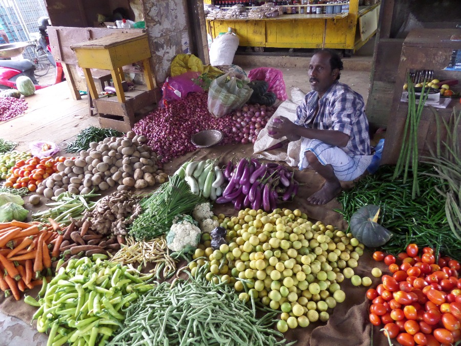17 Jaffna Market SAM_2460.JPG